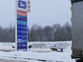 Забавное фото: Цены бензин заставляют переходить  на